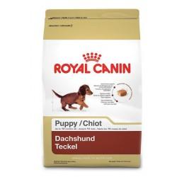 Royal Canin Dachshund Puppy - за кучета порода дакел от 2 до 10 месечна възраст