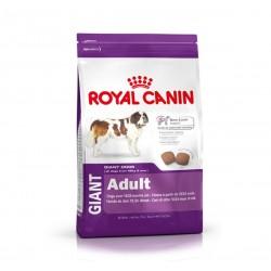 Royal Canin Giant Adult - за зрели кучета от гигантските породи