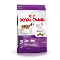 Royal Canin Giant Junior - Храна за кученца от гигантски породи