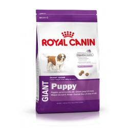 Royal Canin Giant Puppy - Royal Canin Гигантски породи