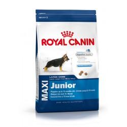 Royal Canin Maxi Junior - кученцата от едрите породи с тегло в зряла възраст от 26 до 44 кг.
