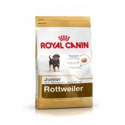 Royal Canin Rottweiler Junior - Ротвайлер от 2 до 18 месеца.