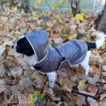Dog Waterproof Дъждобран за Куче по ПОРЪЧКА