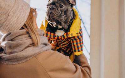 Дрехи за куче – как да изберем най-подходящите?