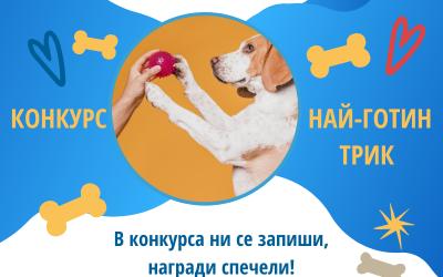 Конкурс за НАЙ-ГОТИН ТРИК