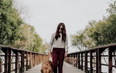 Колко често трябва да разхождате кучето си?