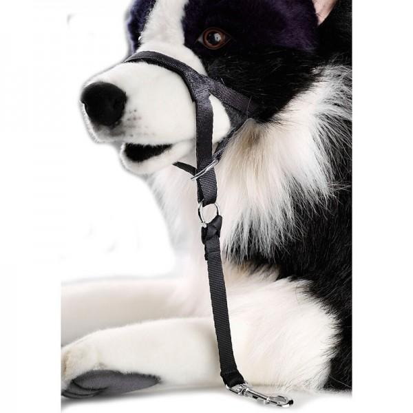Duvo - D&D халтер за кучета
