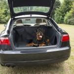 Duvo - покривало за багажник за куче 139 х 99 х 43 см