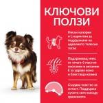 Hill's Science Plan Light Small&Mini с пилешко - Пълноценна суха храна за по-слабо активни кучета в зряла възраст от малките породи