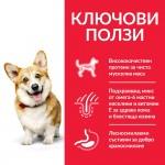 Hill's Science Plan Small & Mini Adult с пилешко - Пълноценна суха храна за дребни и миниатюрни породи кучета в зряла възраст 1-6 години