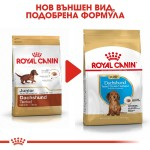 Royal Canin Dachshund Puppy - Роял Канин Храна за Кучета от Породата Дакел от 2 до 10 Месечна Възраст