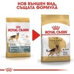 Royal Canin German Shepherd Adult - Храна за Кучета от Породата Немска Овчарка над 15 месеца