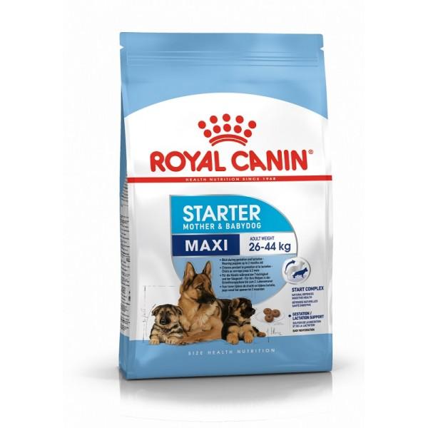 Royal Canin Maxi Starter - Роял Канин Храна за Кучета - за майката и малките кученца