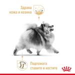 Royal Canin Pomeranian Adult - специална суха храна за кучета порода Померан