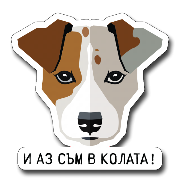 IQ Accessories Car Stickers - Стикери за Кола