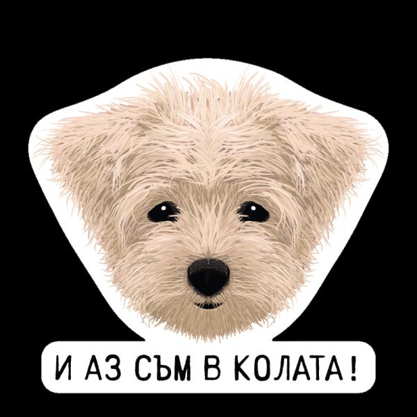 IQ Accessories Car Stickers - Стикери за Кола
