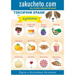 Токсични и вредни храни за кучето