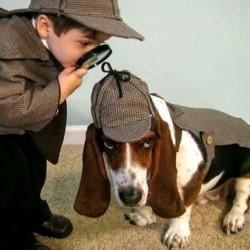 Как да изберете най-подходящото куче за себе си?